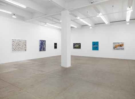 Sacrifice Your Body, Andrew Kreps Gallery, New York
