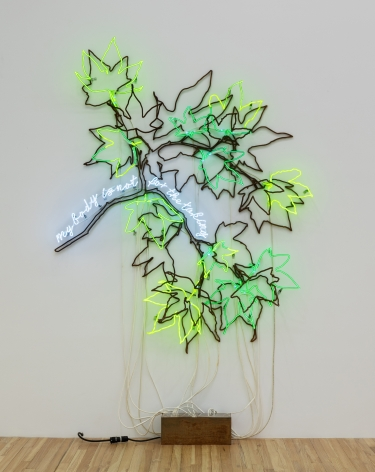 Andrea Bowers, Ecofeminist Sycamore Branches: My Body Is Not for the Taking, 2019