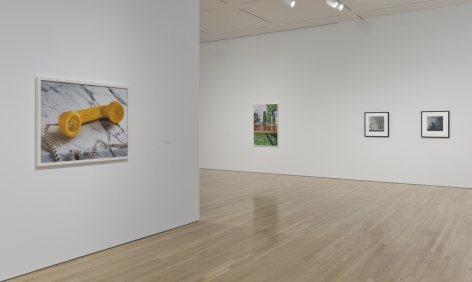 Perfect Likeness: Photography and Composition, Hammer Museum, Los Angeles