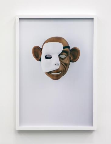 Jamie Isenstein Masks Wearing Masks (Monkey Phantom), 2015