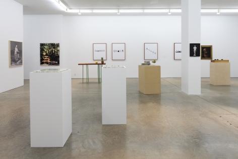 Darren BaderChad Ochocinco, Andrew Kreps Gallery, New YorkFebruary 26 - March 26, 2011