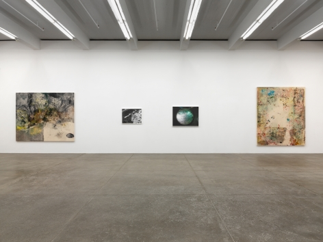 The Deedle Eye, Andrew Kreps Gallery, New York