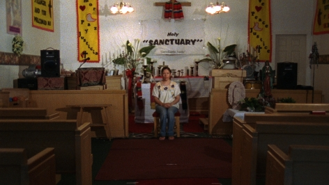Andrea Bowers Sanctuary, 2007