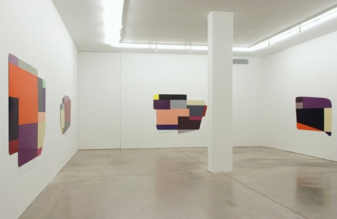 Andrew Kreps Gallery, New York, February 7 - March 16, 2008