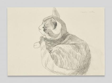 Maria Lassnig, SarahsKitten