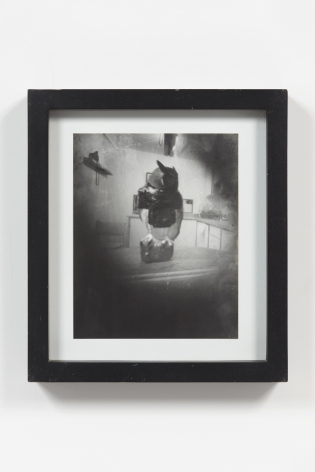 Jorge Pardo, Untitled (Pinhole Camera Owl Photograph)