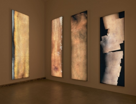 Four vertically-long LED skin works hanging on the wall in a dimly lit space.