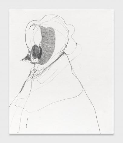 Nicola Tyson, Bonnet