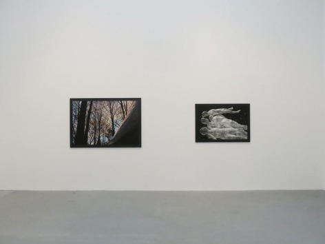Dana Hoey Installation view 5