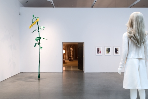 Keith Edmier: 1991-2007, CCS Bard College, 2007, Installation view