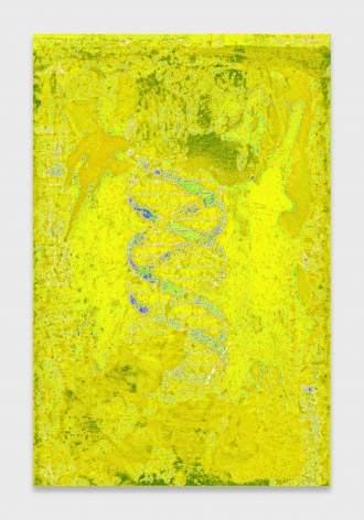 Philip Smith, DNA Yellow