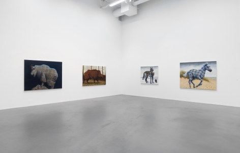 Four paintings of various American animals with tartan patterned fur hang side by side: a mountain goat, a boar, a coyote with a crow, and a horse.