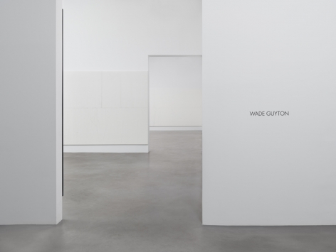 Wade Guyton Installation view 8
