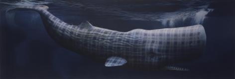 Sean Landers [Moby Dick (Merrilees)]