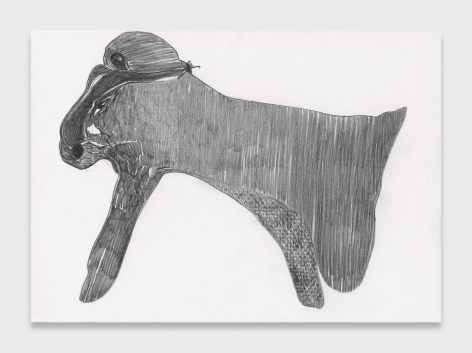 Nicola Tyson, Creature with a Frottaged Hind Leg