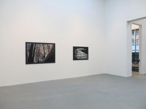 Dana Hoey Installation view 8