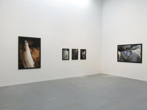 Dana Hoey Installation view 6