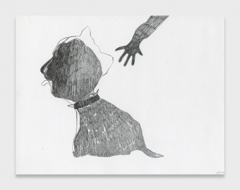Nicola Tyson, Touching the Dog Nevertheless