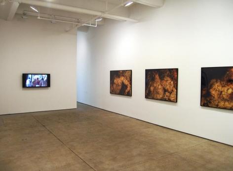 Andrea Fraser Installation view