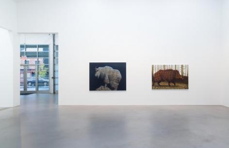 Sean Landers North American Mammals