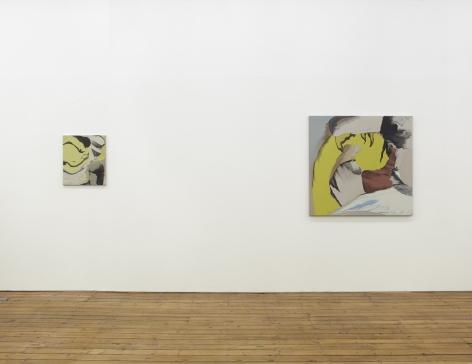 Rezi van Lankveld, The Approach, 2013, Installation view