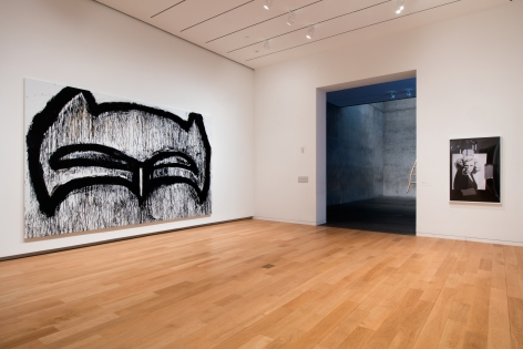 Focus: Joyce Pensato, Modern Art Museum of Fort Worth, 2015   Installation view