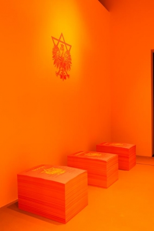 Yael Bartana Installation view 8