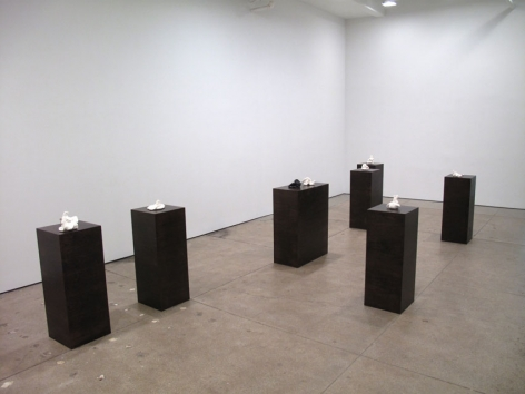 Installation view Friedrich Petzel Gallery