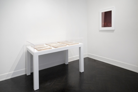 Installation shot of Strange New Beauty at Petzel. the rose tinted portrait of Barron trump hangs on the right hand wall. on a table covered in plexi glass are nine engraved plates.