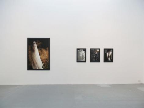 Dana Hoey Installation view 3