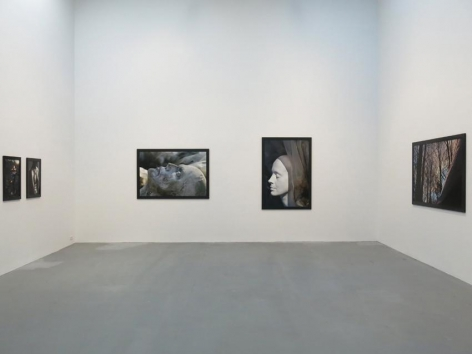 Dana Hoey Installation view 7