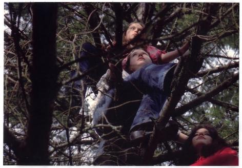 Tree-sit 2002 Digital C-print, Ed. of 6