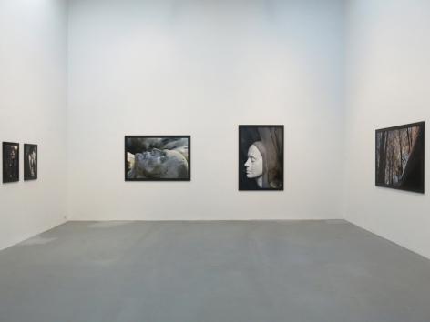 Dana Hoey: The Phantom Sex, Petzel Gallery, 2013