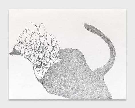 Nicola Tyson, Dog Hair