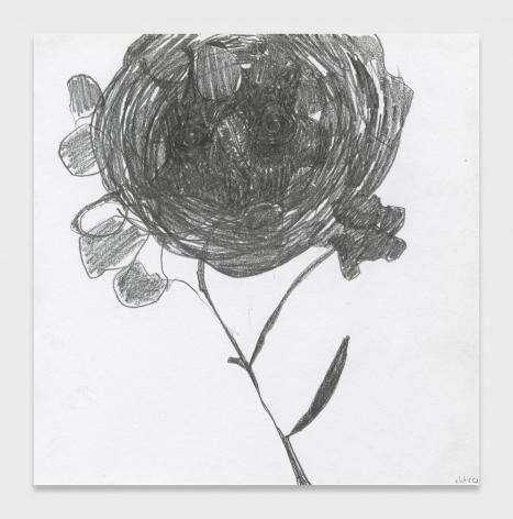 Nicola Tyson, Gloom Bloom