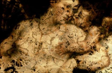 Untitled (Pollock/Titian) #4
