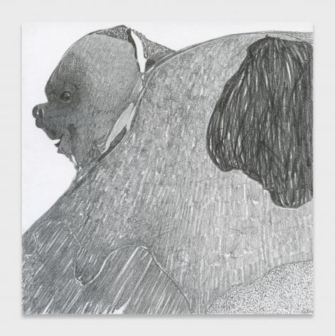 Nicola Tyson, Dogscape