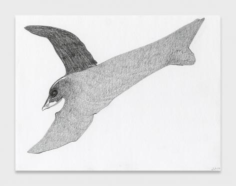 Nicola Tyson, Double Bird