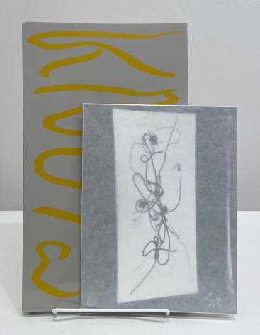 Seth Price, Knots, limited edition
