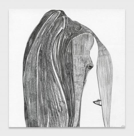 Nicola Tyson, Gloria Steinem's Hair
