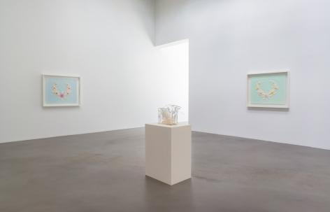 Regeneratrix,Petzel Gallery, 2015, Installation view