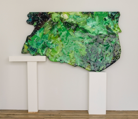 Selena Kimball, Mapping Night Vision #2, 2015