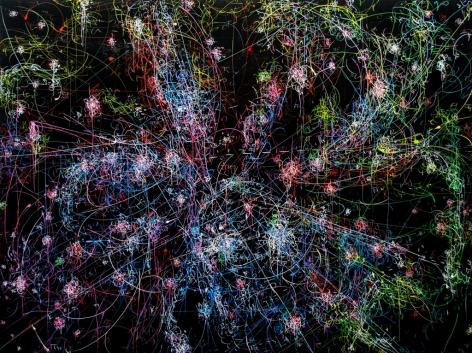 Kysa Johnson, blow up 261 - the long goodbye (hello, hello) - subatomic decay patterns and the Trifid Nebula, 2015