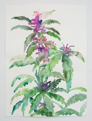 Kim McCarty, Untitled (Green Plant), 2020