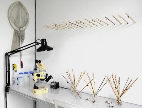 Paul Villinski, Butterfly Machine, installtion view, 2014