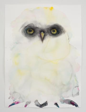 Kim McCarty, Untitled (White Owl), 2021
