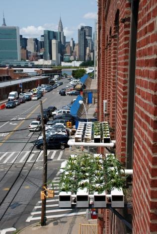 Hydro Window Boxes,Studio View, Paradigm, Long Island City, NY 2014