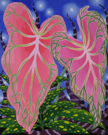 Amy Lincoln, Caladium Study, 2016