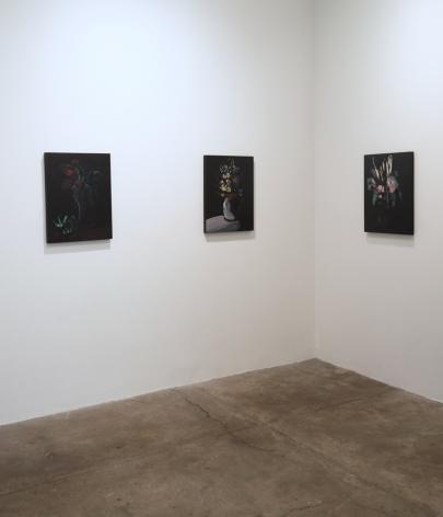 Jenn Dierdorf, 2016, (installation view)