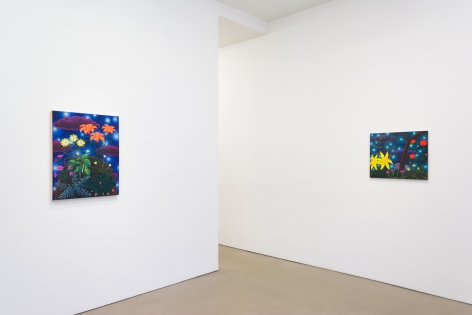 Amy Lincoln: Sun, Moon, Stars, 2018, (Installation view)